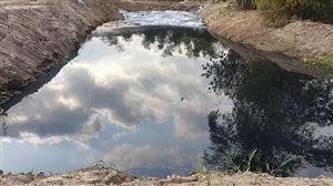 Cần xử lý nghiêm những hành vi hủy hoại môi trường