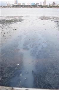 Đà Nẵng: Nước thải đen ngòm xả tràn ra sông Hàn