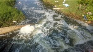 """Đã có kết quả kiểm tra : """"Hàng loạt hồ nuôi tôm chưa đảm bảo hệ thống xử lý nước thải tại Quảng Bình"""""""